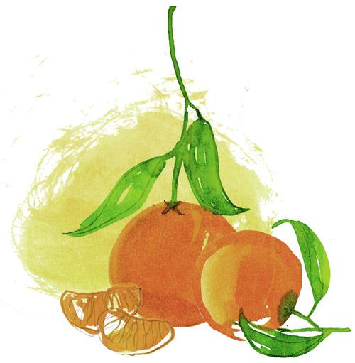 211_clementine