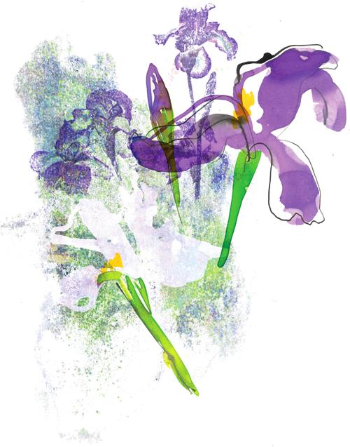 09_iris